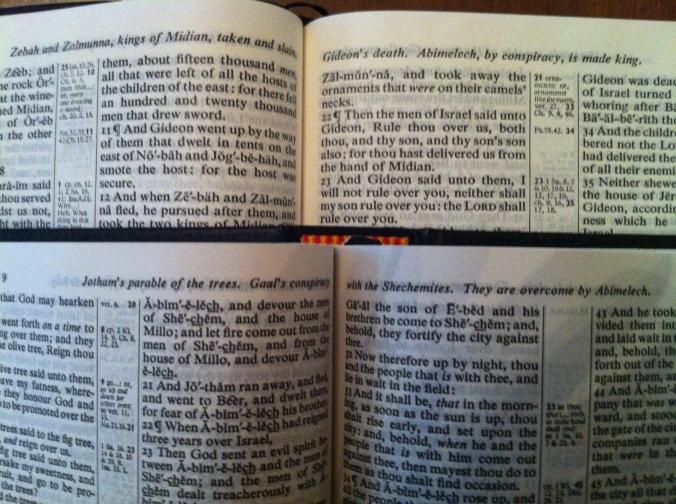 trinitarian bible004