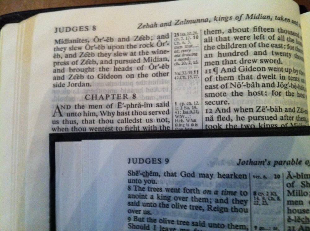 trinitarian bible005