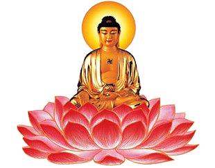 Amitabha.Vows